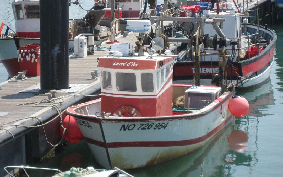 Quelle collaboration entre l'éolien en mer et la pêche professionnelle ?