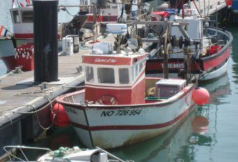 Photo illustrant la collaboration entre l'éolien en mer et la pêche professionnelle
